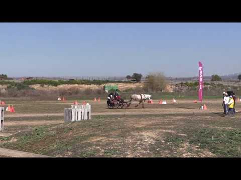 I Fase Cto Navarro Enganches Obstáculos 240319 Video 4
