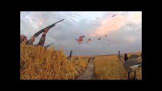 chasse . compilation de tirs au petit gibier  .caméra embarquée 2012
