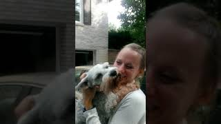 Dog passes out from overwhelming joy - YouTube