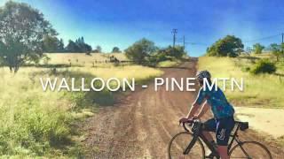 Walloon - Pine Mtn