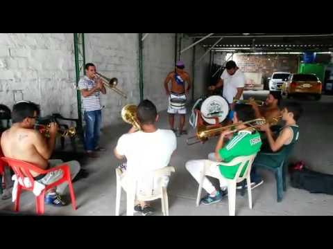 Te quiero como a mi vieja - La Banda Los Del Sur filial Barrancabermeja - Los del Sur - Atlético Nacional