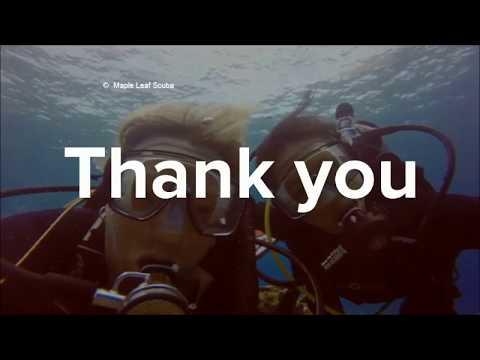Underwater love in Cozumel