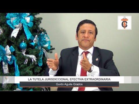 Programa 39 - La Tutela Jurisdiccional Efectiva Extraordinaria -Tribuna Constitucional