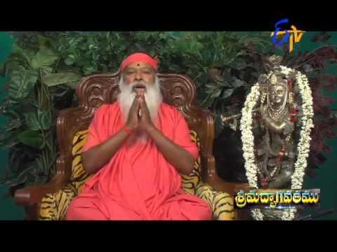 Srimadbhagavatam-17th-April-2016-శ్రీ-మద్భాగవతము
