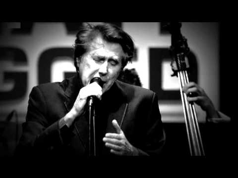 Back To Black - Bryan Ferry (Live In Zermatt)