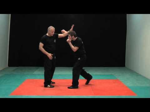 Krav Maga – Les techniques de base – Niveau 1 – Programme Ceinture Jaune – DVD 261.wmv