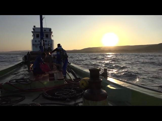 鮭定置網漁業