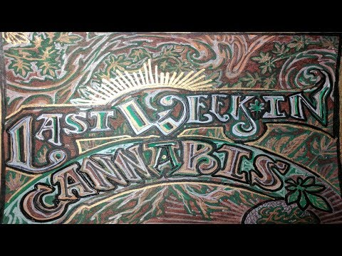 Last Week In Cannabis News Show 6/19/17