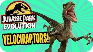 Jurassic World Evolution - Velociraptor Alpha Male Problems! - Jurassic World Evolution Gameplay