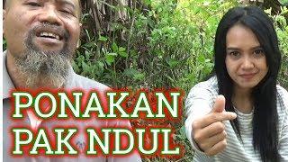 Video Pak Ndul - PONAKAN PAK NDUL MP3, 3GP, MP4, WEBM, AVI, FLV Juni 2019