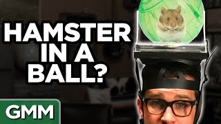 What's On My Head? Challenge (Ft. Mayim Bialik)