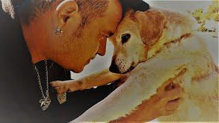 EL SIERVO feat. LINCOLN PROPHET – «My best friend»