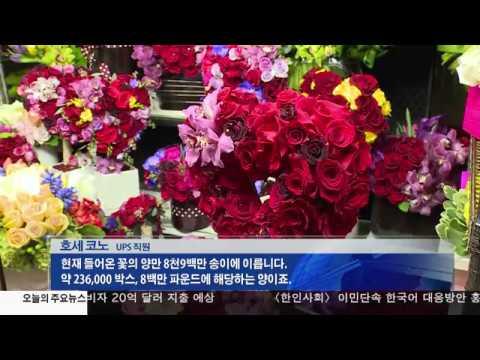 발렌타인 데이 '20억 달러' 지출 2.13.17 KBS America News
