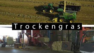 Trockengras - Die klevere Futterkonservierung