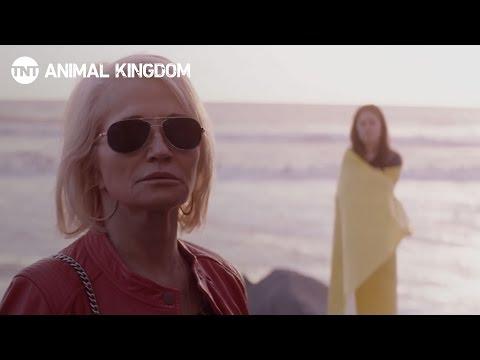 Animal Kingdom Season 2 (Promo 'Family')