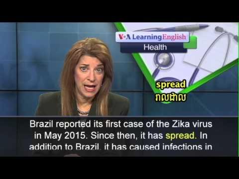 Brazil Declares Emergency Over Brain Damage Births