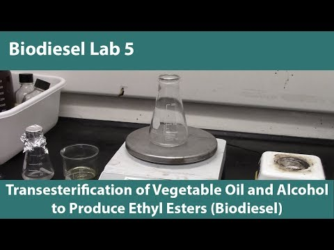 Lab 5- Transesterification of Vegetable Oil and Alcohol to Produce Ethyl Esters (Biodiesel)