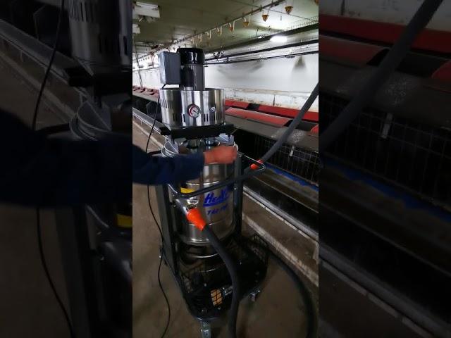 Heeft jou pluimveehouderij nood aan een reiniging???  ???????? Comfort Cleaning is expert in reiniging van de ventilatieruimte - luchtkanalen. Ook bij een laag pathogene variant van de vogelgriep, beter gekend onder aviaire influenza bij kippen in een kwekerij/broeierij of pluimveebedrijven wordt deze expertise aangeboden.  Onder een droge techniek van industrieel stofzuigen worden de vloerpanelen, bestaande uit isolatie panelen gestofzuigd. Het mogelijks gecontamineerde stof bij een laag pathogene uitbraak van vogelgriep wordt volledig verwijderd uit de zone van de ventilatie of luchtkanalen.  Helemaal overtuigd?????  Contacteer ons vrijblijvend:  ????056 70 70 80  ????info<strong>@comfortcleaning</strong>.be  ????www.comfortcleaning.be