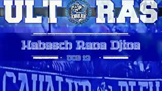Download Lagu Chant Ultras Cavalier Bleu 2018 - Habache Rana Jina - Mp3