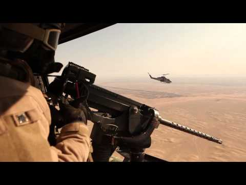 U.S. Marines with the air interdiction...