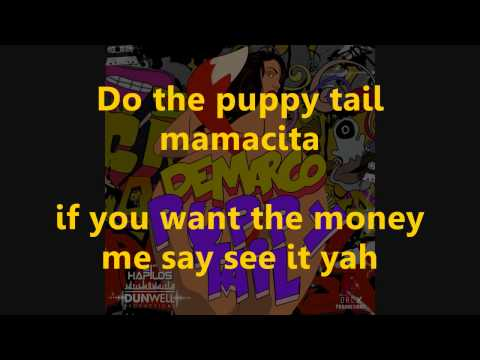 Demarco Puppy Tail Lyrics @dancehalllyrics