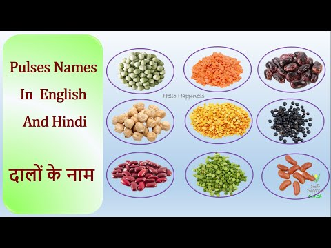 Indian Dal names | Different Types of Pulses | दालों के नाम  | Moong dal , Masoor dal, Chana dal...