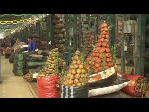 Φεστιβάλ πατάτας στο Περού