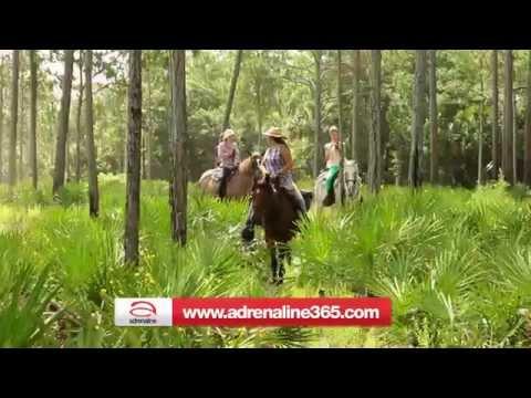 Horseback Riding Orlando - 1 Hour 30 Minutes
