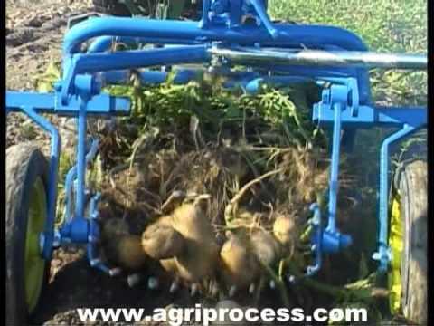 Arracheuse de pomme de terre pour motoculteur - Agriprocess
