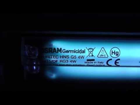 Fluorescent germicida