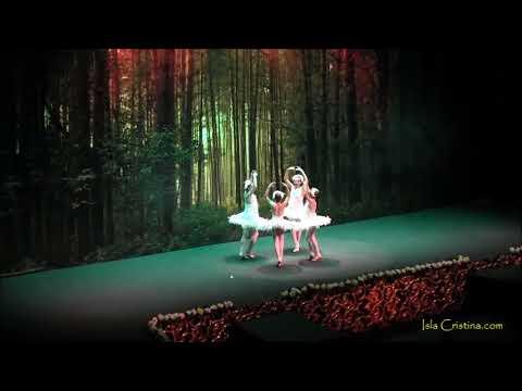 Espectáculo – Show Coronación Reina Infantil Carnaval de Isla Cristina 2018