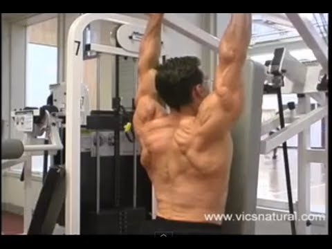 Best Tricep workouts Best triceps workout program bodybuilding workouts exercises routine