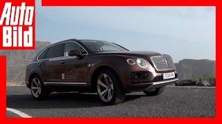 Video: Bentley Bentayga Tour - Das Ziel (17) / Roadtrip / Finale / Test / Drive / Review by Auto Bild