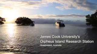 Orpheus Island Australia  city pictures gallery : The Classroom on the Reef
