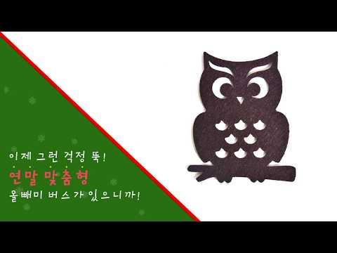 강남구청 카드뉴스 - 올빼미버스