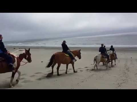 Sun Set Horseback Beach Ride in Pacific City Oregon Green Acres
