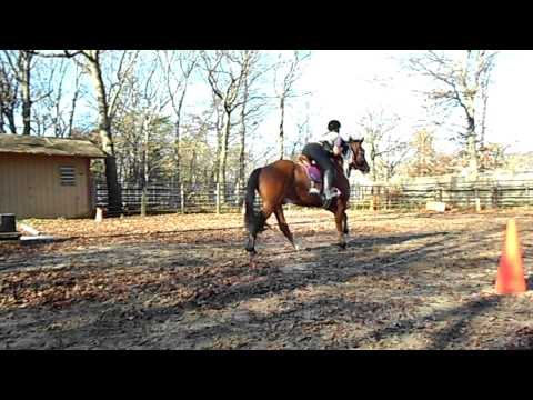 horseback riding lesson jennifer 011.AVI