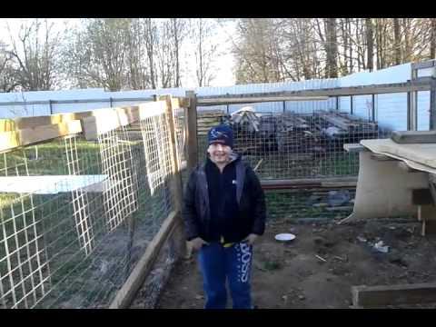 Вольер для кролика видео