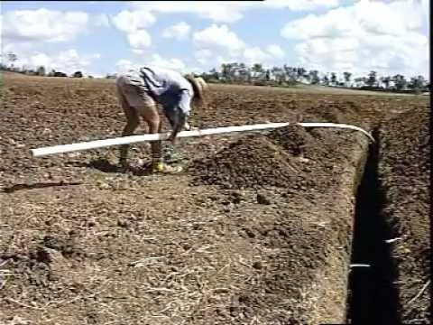 Australia Sugar cane Irrigating