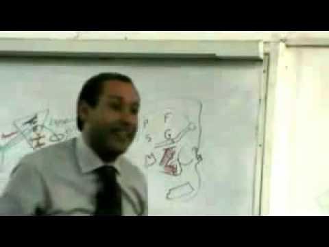 dr ahmed galal head 5