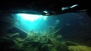<h5>Salviaterra wreck Sea of Cortez</h5>
