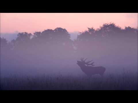 Carl Nielsen : Dimman lättar Op.41
