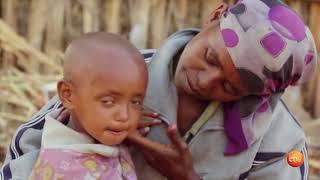 Reyot: Interview with Dr. Wonedu Alemayehu