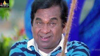 Video Brahmanandam Comedy Scenes Back to Back | Vol 3 | Non Stop Telugu Comedy | Sri Balaji Video MP3, 3GP, MP4, WEBM, AVI, FLV Desember 2018