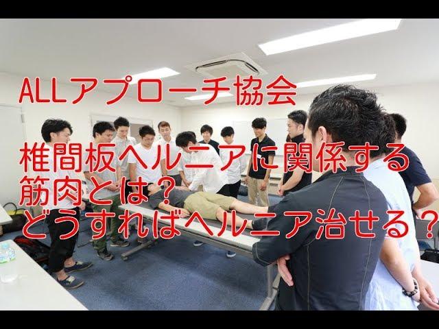 椎間板ヘルニア 関係する筋肉 【越谷 整体 治療】