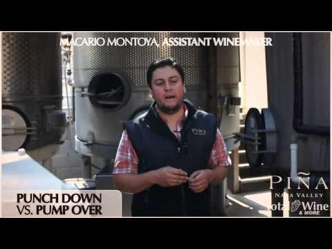 Piña Napa Valley Winery - Punch Down vs Pump Over