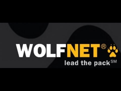 WolfNet WordPress Plugin Adding The Advanced Property Search