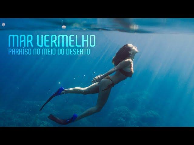 O mar VERMELHO é AZUL - Praia No EGITO! Vlog 5 - Luisa Accorsi