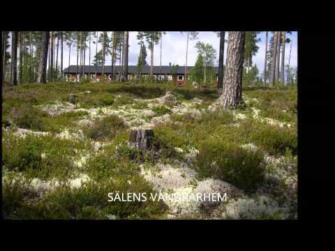 Video van STF Sälens Vandrarhem