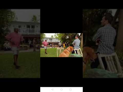 Hawaii five 0 season 10 episode 9